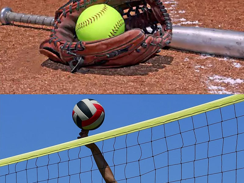 photo of a baseball mit, bat, baseball, plate, vollyball net, and vollyball